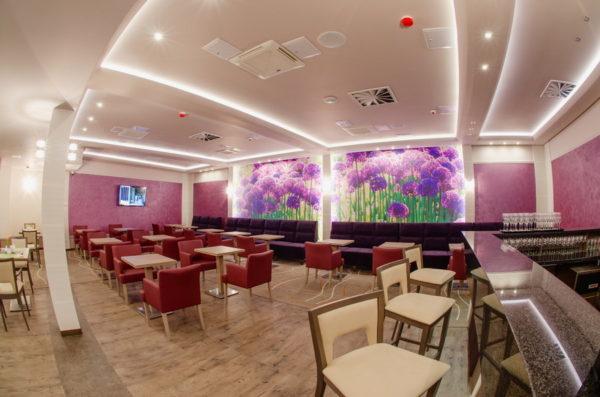 Hotel Olivia Medical SPA – SKOMIELNA CZARNA